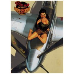 Pin-up Wings 03 HC<br>prenten: koele vliegtuigen & warme vamps