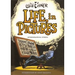 Eisner Life in pictures Autobiogr. stories HC Stofomsl.