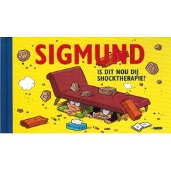 Sigmund  Gronings HC Is dit nou dij shocktherapie?