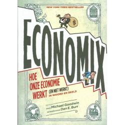 Burr strips Economix Hoe onze economie werkt (en niet werkt) in woord en beeld