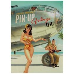 Pin Up Wings 04 HC