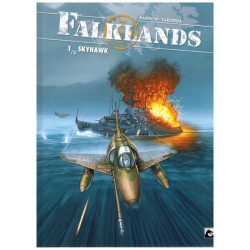 Falklands HC 01 Skyhawk