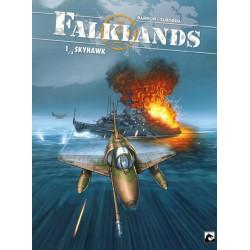 Falklands 01 Skyhawk